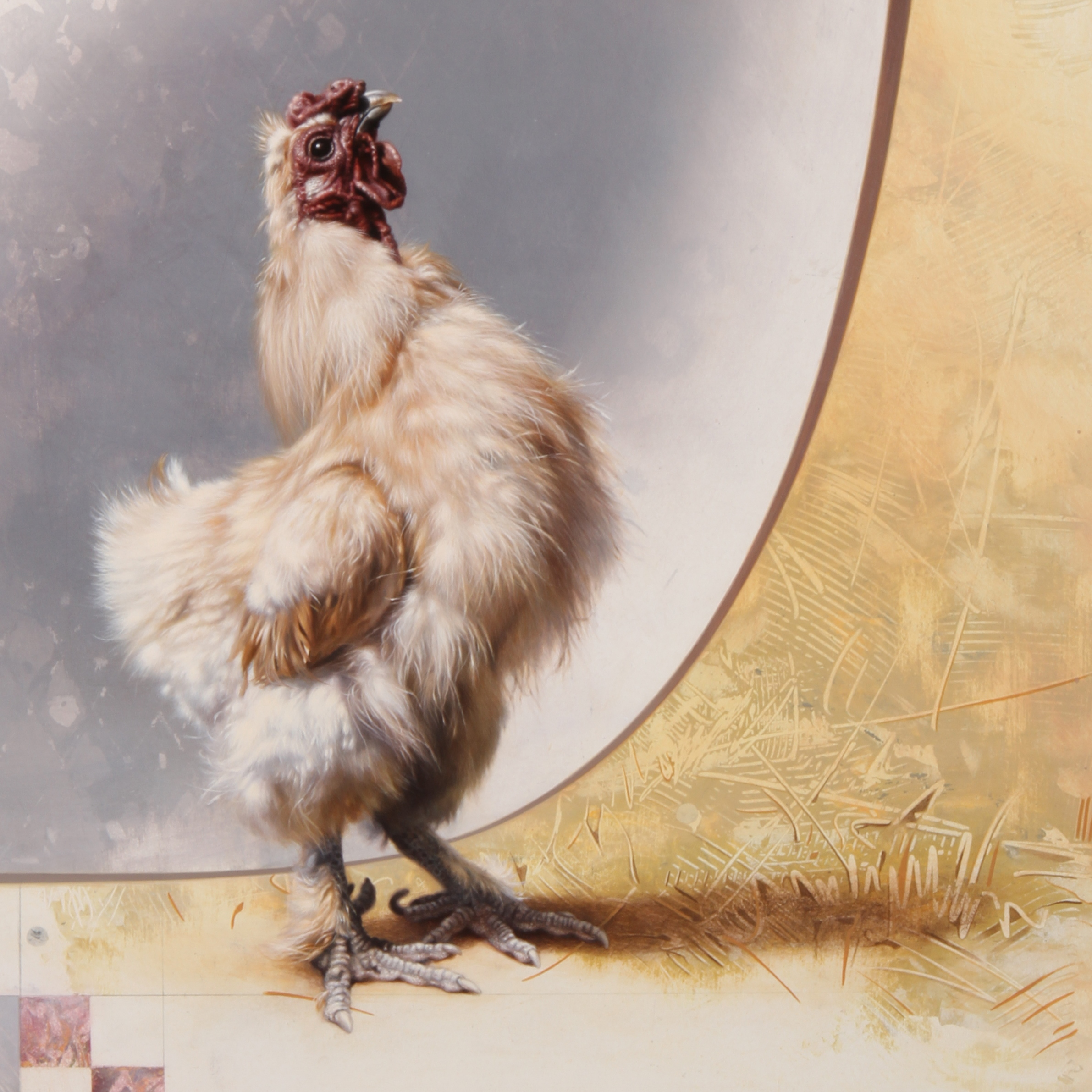 Silkie Chicken by Andrew Denman
