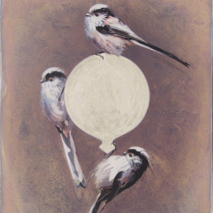 Long-Tailed Tits by Andrew Denman