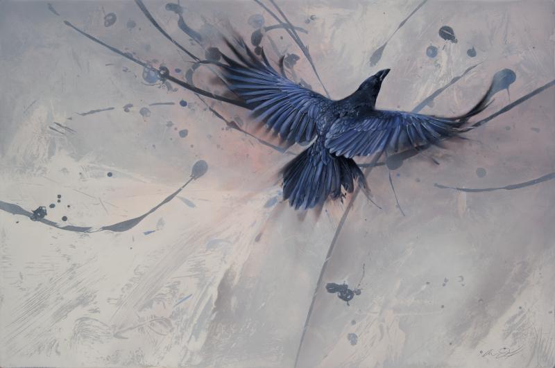 Raven in Flight by Andrew Denman