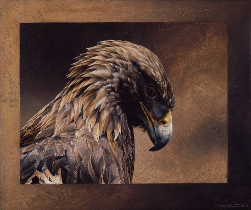 Golden Eagle by Andrew Denman