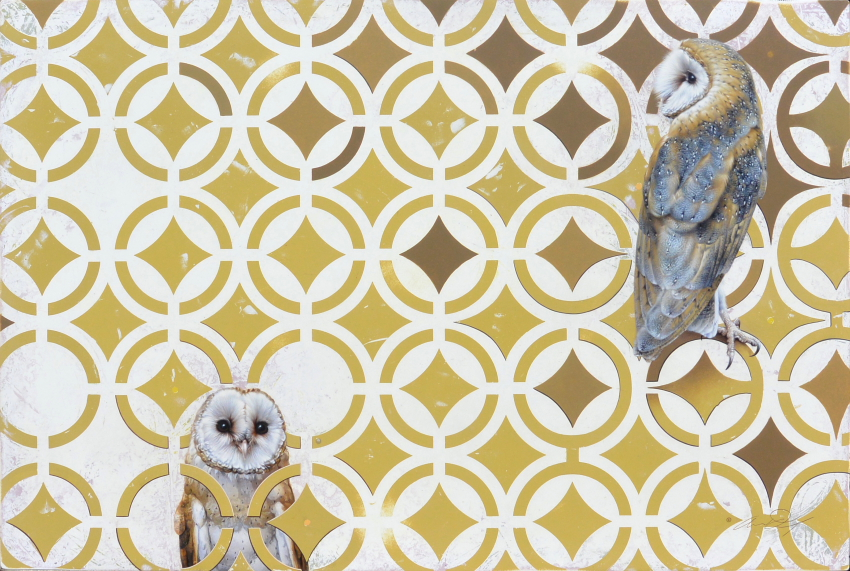 Barn Owls by Andrew Denman