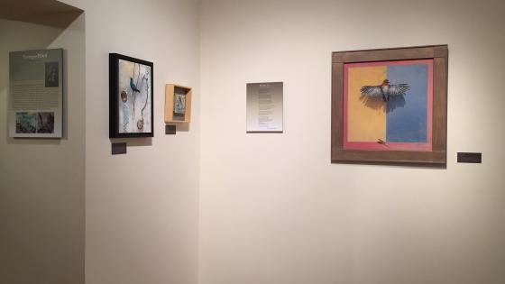 Hiram Blauvelt Art Museum Opening 2