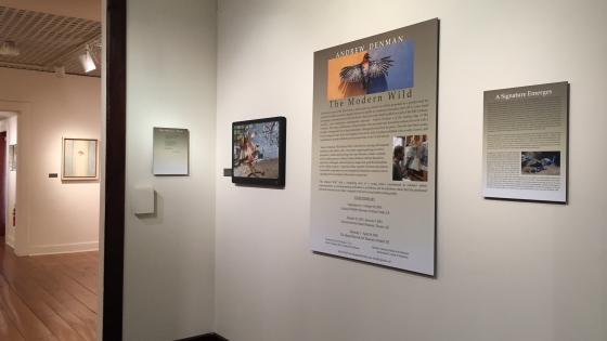 Hiram Blauvelt Art Museum Opening 3