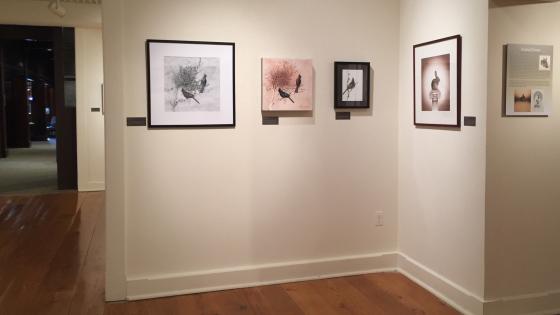 Hiram Blauvelt Art Museum Opening 4