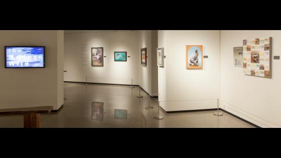 Arizona-Sonora Desert Museum Opening 1