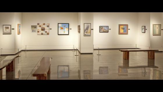 Arizona-Sonora Desert Museum Opening 2